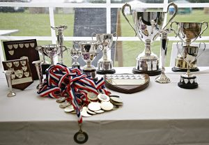 Winners' cups at Stone flower show
